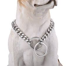 Where Should You Attach A Leash To A Choke Chain Style Collar?